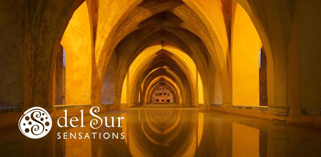Imagen Visual de Del Sur Sesnations