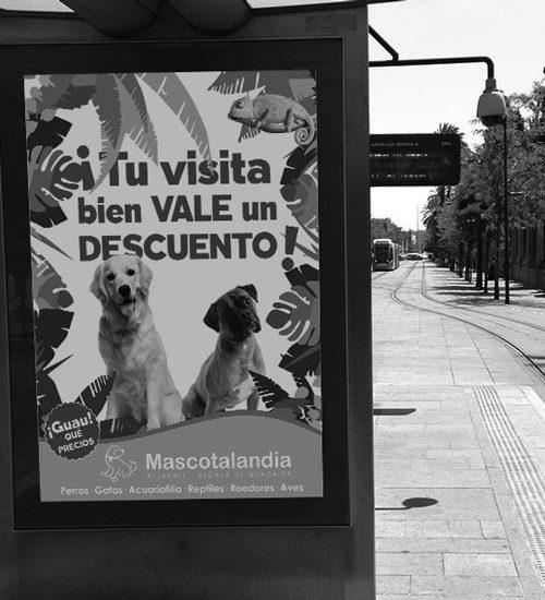 Mascotalandia en Sur Mascotas 2016. Fibes Sevilla